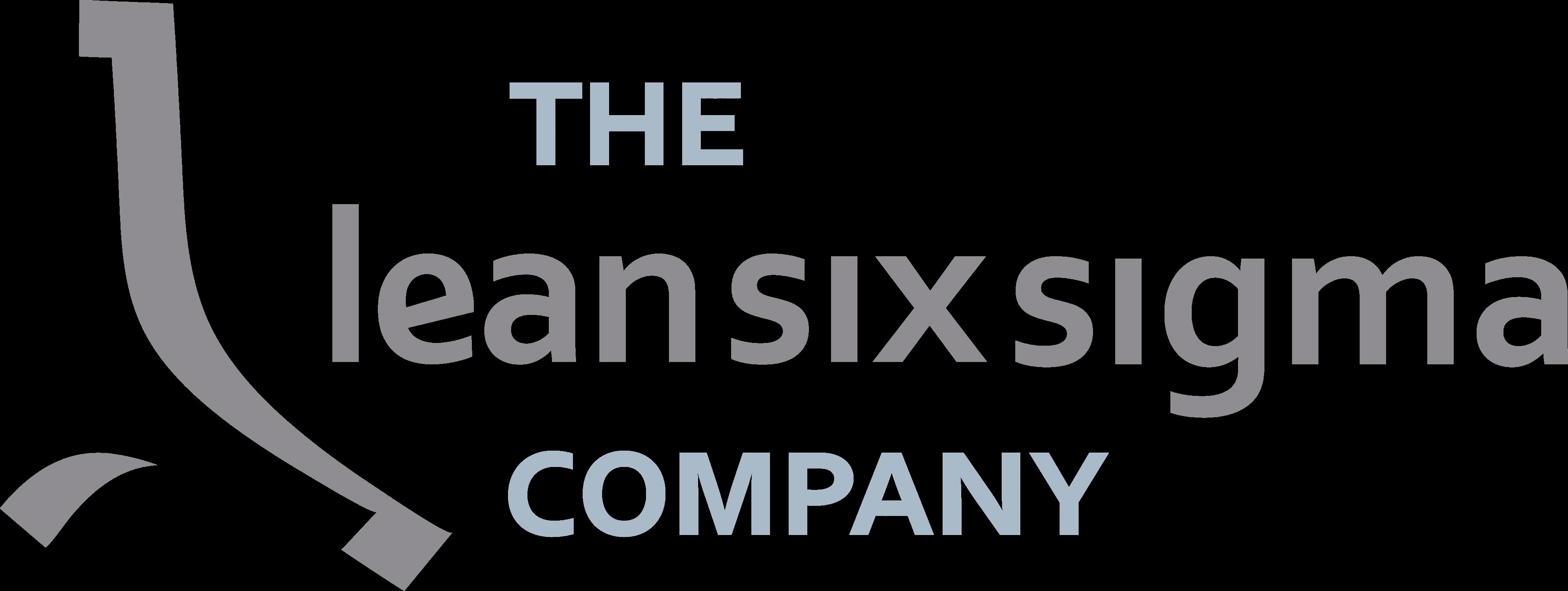 The Lean Six Sigma Company España